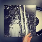 st / Frail Hands (LP : Black / White Mix)