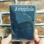 Our Voices Will Soar Forever / Amygdala (CASSETTE: Ltd50)