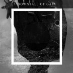 st / Downfall Of Gaia (CD)