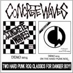 Two Hard Punk Roq Classics For Danger Boy / Concrete Waves (CDR)