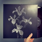 parted/departed/apart / Frail Hands (LP: Red Marble)